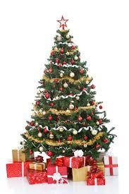 how do you put lights on a christmas tree how to decorate a christmas tree with led lights