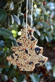 diy bird seed ornament