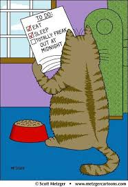 To Do List Meme - cat to do list meme collection