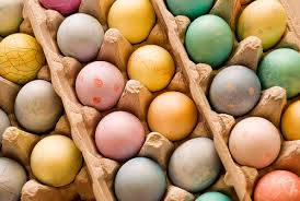 painted eggshells the easter egg a pet s friend or foe petmd
