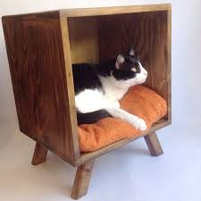 Cats In Dog Beds Best 25 Midcentury Dog Beds Ideas On Pinterest Midcentury Cat