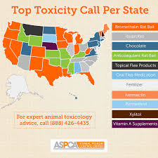 what u0027s most common pet toxin in your state aspca animal