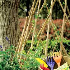 this weeks surprise item bamboo trellis diy dad challenge