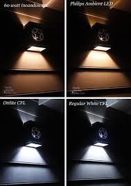 fluorescent lights awesome soft fluorescent light bulbs 13