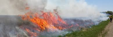 National Wildfire Activity by Sd Wildland Fire History