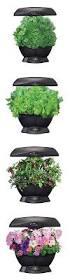best 25 hydroponics kits ideas on pinterest indoor grow kits