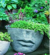 Large Head Planters Img 3276 Head Planters Planters And Gardens