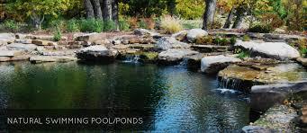 Natural Swimming Pool Total Habitat Natural Swimming Pools U0026 Ponds Design