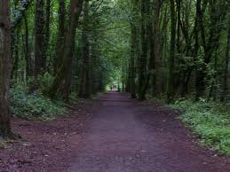 Inishturk Jobs Belleek Woods Ballina Co Mayo Ireland Favorite Places