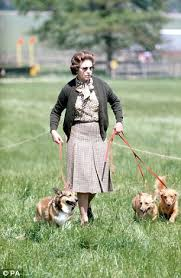 queen elizabeth dog the queen s corgis holly and willow could be the last for elizabeth