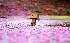 wallpaper danbo couple wallpapers hdq pictures download for free