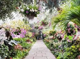Botanical Garden Orchid Show Go Inside The Gorgeous Orchid Show At The New York Botanical