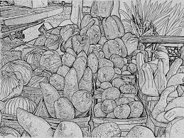 harvest vegetables coloring page printable digital