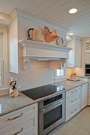Dynasty Omega Kitchen Cabinets Caledonia Home Laura Mccranner The Williams Studio