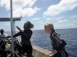 padi diving courses in fiji learn to dive on fiji u0027s beautiful reefs