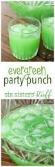 Totally Awesome Party Punch Ideas Tropical Party Punch Recipe Tropical Party Punch Recipes And
