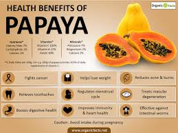 13 surprising benefits of papaya pawpaw organic facts