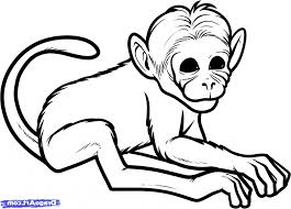 simple drawing of a monkey art for kids how to draw a monkey