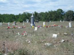 blackfoot native plants holy family mission cemetery blackfeet nation browning
