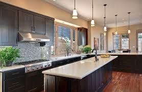 Colors For Kitchen Cabinets by Dark Cabinets Light Countertop Houzz