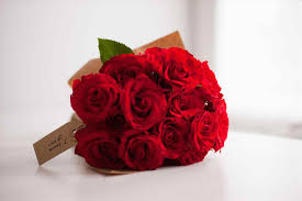 Flowers Colors Meanings - 100 meaning of flowers colors roses 206 best favorite roses