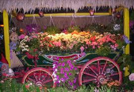 flower shops flower shops in balian punjab special events flower shops in
