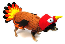 thanksgiving costumes pilgrim costumes turkey costumes