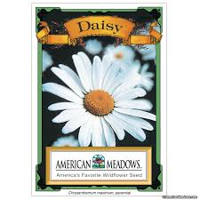 bulk seed packets seed packet american