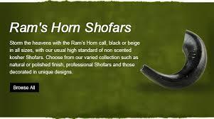 shofars for sale myshofar shofars for sale