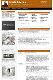account director resume samples visualcv resume samples database