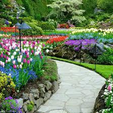 my beautiful garden home facebook
