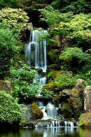 Oregon cheap places to travel images 24 best oregon images nature oregon coast and seattle jpg