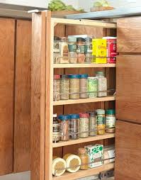best 25 spice cabinets ideas on pinterest pull out spice rack