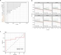 biomarkers predict outcome in charcot marie tooth disease 1a