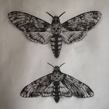 best 25 moth tattoo ideas on pinterest black butterfly tattoo