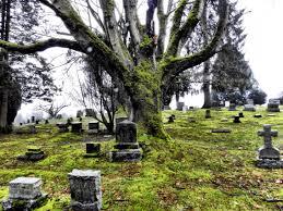 spirit halloween everett wa evergreen cemetery everett washington cemeteries pinterest