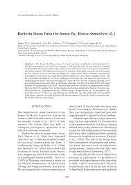 bacteria fauna from the house fly musca domestica l pdf