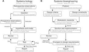 an engineering design approach to systems biology integrative