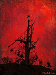 under a blood red sky blood color red and red black