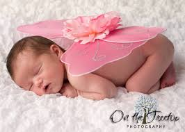 infant photo props newborn tiny fairy wings for infant photo props