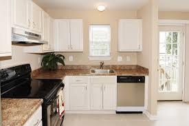 Black Or White Kitchen Cabinets Neutral Granite Countertops Hgtv With White Kitchen Light