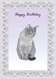 cats greeting cards blue burmese cats birthday cards from