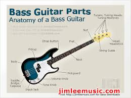 the parts of a bass guitar anatomy of the electric bass