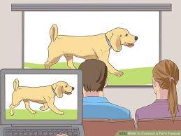 Can You Bury A Dog In Your Backyard How To Conduct A Pet U0027s Funeral With Pictures Wikihow