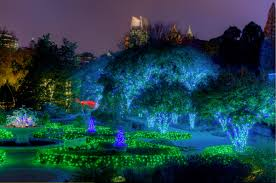 Botanical Gardens Atlanta Christmas Lights by Better Make It Midtown Staycation Day 2