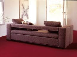 Sofa That Turns Into Bunk Beds by 8 Best Multifunctional Furniture Images On Pinterest 3 4 Beds