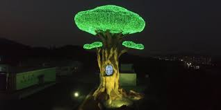 tree of monument unveiled for 2018 pyeongchang winter
