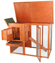 Small Backyard Chicken Coops by Amazon Com Trixie Pet Products Chicken Coop With Outdoor Run