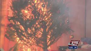safd stages christmas tree fire demonstration
