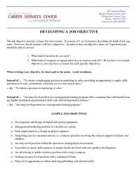 Job Objectives On Resume by Examples Cool Accountant Portrait Sales Objectives Retail